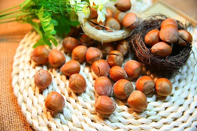 Hazelnuts, Nuts for Brain